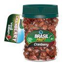 fruta-desidratada-cranberry-brasil-frutt-160g-Pacheco-502928