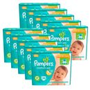 kit-10-fralda-descartavel-pampers-confort-sec-g-380-tiras-Drogarias-Pacheco-9030861