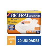 Absorvente-Geriatrico-Bigmaxi-Super-20-Unidades-Pacheco-222674-1
