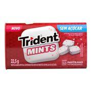 pastilhas-trident-mints-morango-22--5g-Pacheco-696412