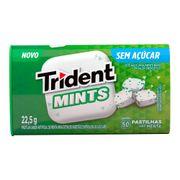 pastilha-trident-mints-menta-22-5g-Pacheco-699098